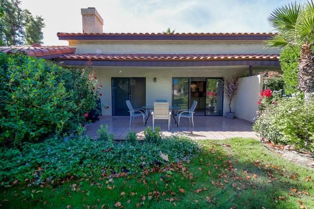 210 Lakecrest Lane, Palm Desert, CA 92260 (MLS #219051892) :: The Jelmberg Team
