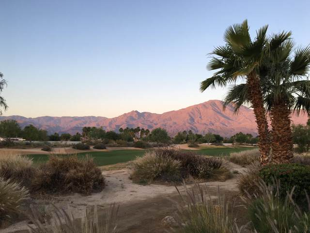 81335 National Drive, La Quinta, CA 92253 (MLS #219052713) :: The Sandi Phillips Team