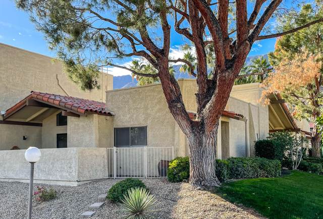 340 E San Jose Road, Palm Springs, CA 92264 (MLS #219055260) :: Zwemmer Realty Group