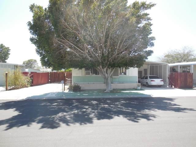 69285 Parkside Drive, Desert Hot Springs, CA 92241 (MLS #219059700) :: Brad Schmett Real Estate Group