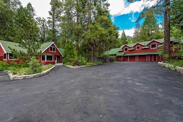 54520 S Circle Drive, Idyllwild, CA 92549 (MLS #219063563) :: Hacienda Agency Inc