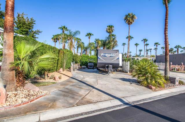 69411 Ramon Road #725, Cathedral City, CA 92234 (MLS #219066699) :: Mark Wise | Bennion Deville Homes
