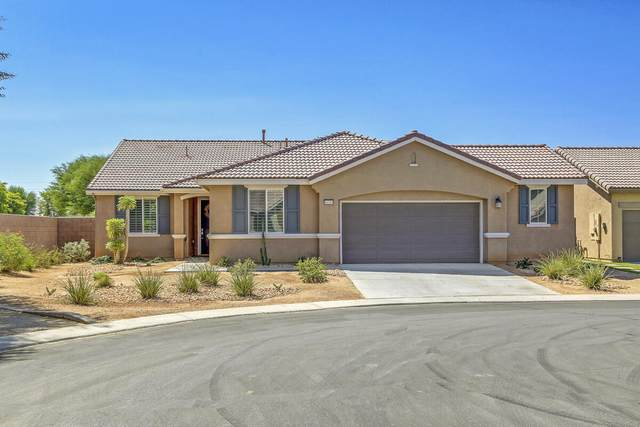 84369 Falco Court, Indio, CA 92203 (MLS #219067514) :: Zwemmer Realty Group
