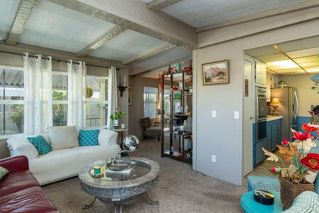 246 Laredo Drive, Palm Springs, CA 92264 (MLS #219068306) :: Lisa Angell