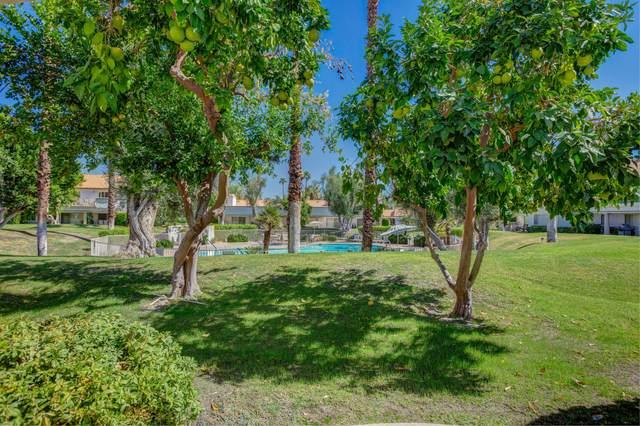 186 Desert Falls Circle, Palm Desert, CA 92211 (MLS #219068694) :: Zwemmer Realty Group