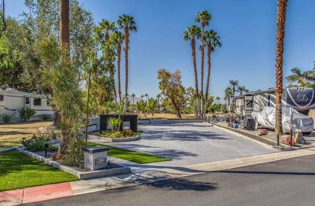 69411 Ramon Road #803, Cathedral City, CA 92234 (MLS #219069316) :: Lisa Angell