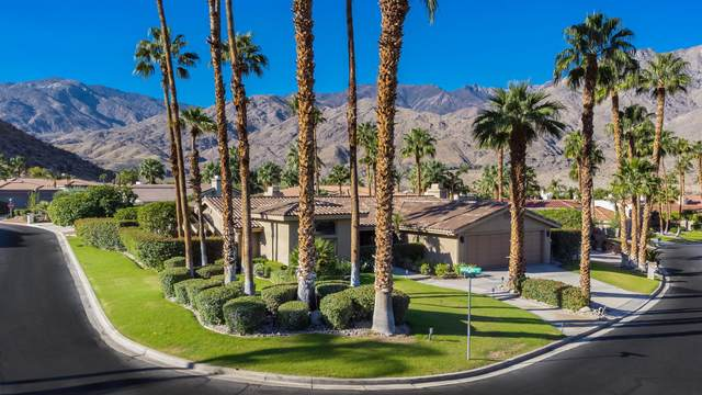 64931 Montevideo Way, Palm Springs, CA 92264 (MLS #219069387) :: Desert Area Homes For Sale