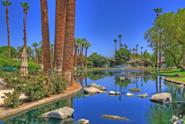 119 Tanglewood, Palm Desert, CA 92211 (MLS #218034448) :: Brad Schmett Real Estate Group