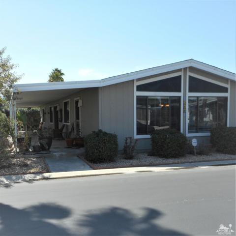 268 Coble Drive, Cathedral City, CA 92234 (MLS #219008963) :: Brad Schmett Real Estate Group