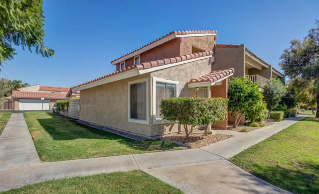 315 Tava Lane, Palm Desert, CA 92211 (MLS #219030496) :: Brad Schmett Real Estate Group