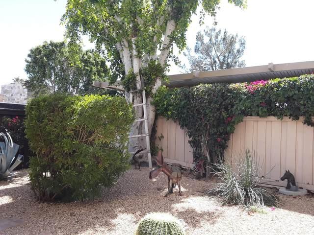 1490 S Camino Real, Palm Springs, CA 92264 (MLS #219041288) :: Hacienda Agency Inc