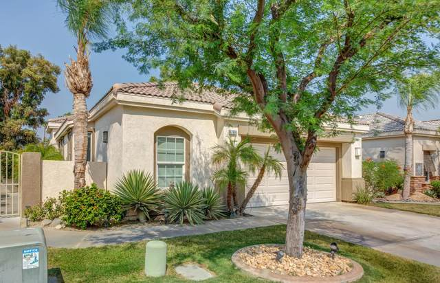 67694 S Natoma Drive, Cathedral City, CA 92234 (MLS #219049241) :: Desert Area Homes For Sale