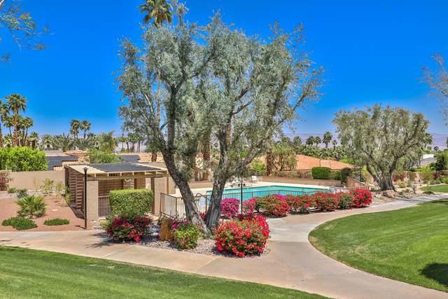 48664 Moon Terrace Lane, Palm Desert, CA 92260 (MLS #219060712) :: Brad Schmett Real Estate Group