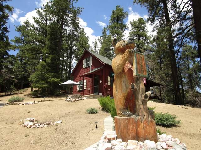 950 Cameron Drive, Big Bear Lake, CA 92315 (#219063469) :: The Pratt Group