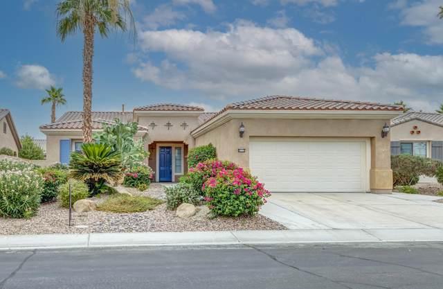 81112 Avenida Castelar, Indio, CA 92203 (MLS #219063654) :: Brad Schmett Real Estate Group