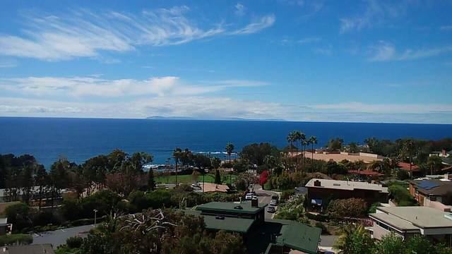 21702 Ocean Vista Drive, Laguna Beach, CA 92651 (MLS #219064169) :: The Jelmberg Team
