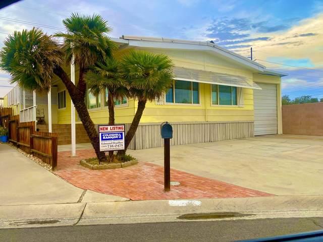 73290 Colonial Drive, Thousand Palms, CA 92276 (MLS #219068586) :: Lisa Angell