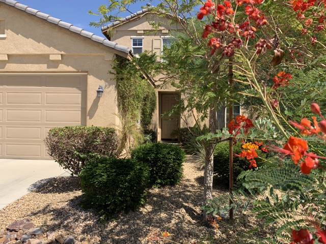 43250 Lago Brezza Drive, Indio, CA 92203 (MLS #219024117) :: The Sandi Phillips Team