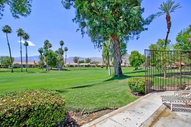 215 Calle Del Verano, Palm Desert, CA 92260 (MLS #219047083) :: The Jelmberg Team