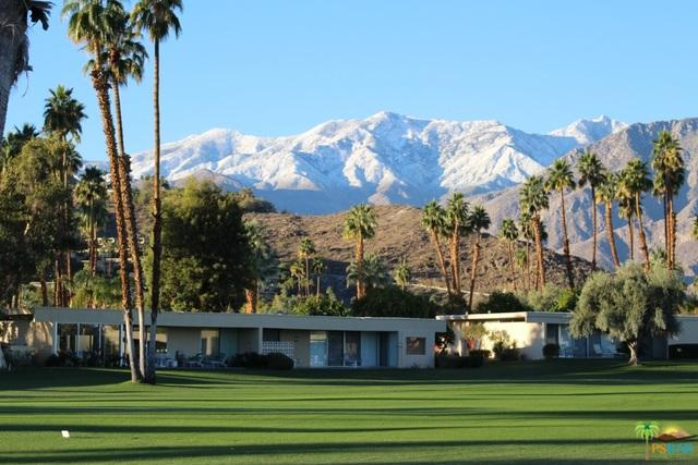 311 Westlake Terrace, Palm Springs, CA 92264 (MLS #17273766PS) :: Brad Schmett Real Estate Group