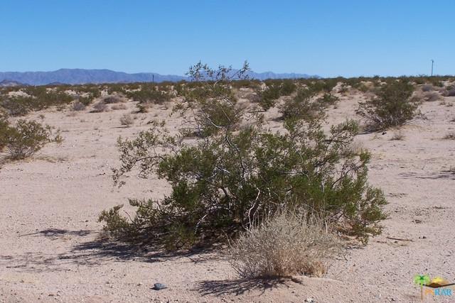 0 Desert Flower Avenue, 29 Palms, CA 92277 (MLS #17282978PS) :: Team Wasserman