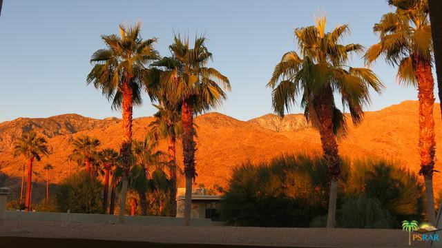 840 E Palm Canyon Drive #201, Palm Springs, CA 92264 (MLS #18299082PS) :: Brad Schmett Real Estate Group