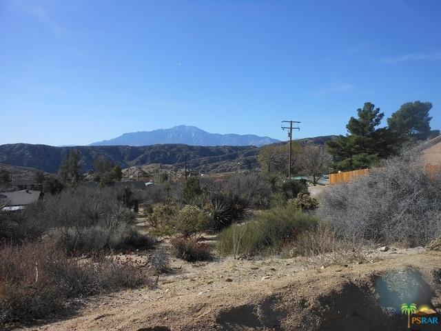 0 Artesia Avenue, Morongo Valley, CA 92256 (MLS #18309082PS) :: Deirdre Coit and Associates