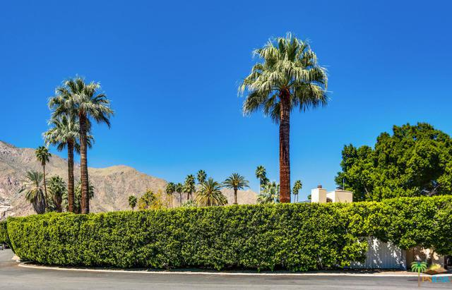 470 E Valmonte Sur, Palm Springs, CA 92262 (MLS #18325012PS) :: The John Jay Group - Bennion Deville Homes