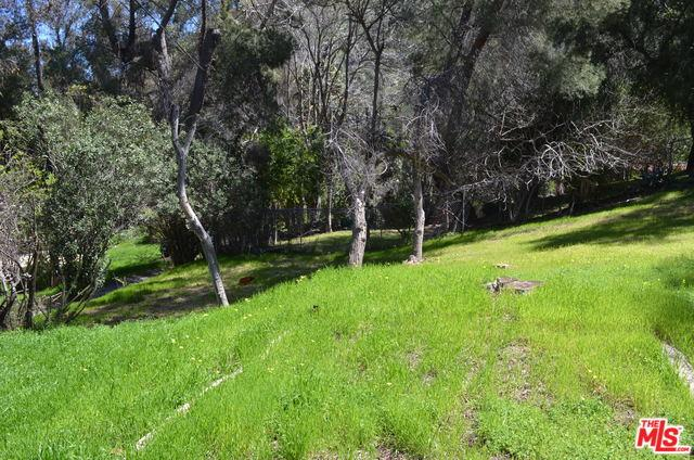 0 Dale Road, Topanga, CA 90290 (MLS #18329502) :: The John Jay Group - Bennion Deville Homes