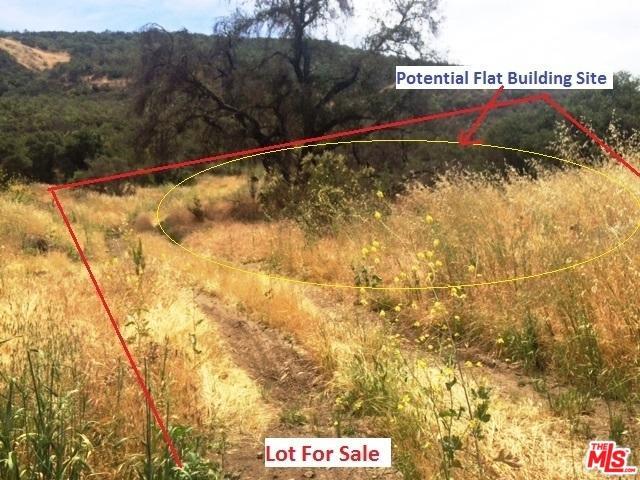 28422 Agoura Road, Agoura Hills, CA 91301 (MLS #18345266) :: Deirdre Coit and Associates