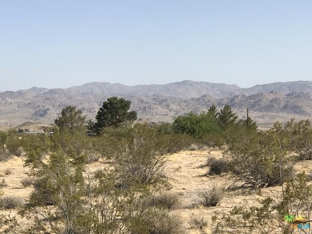 0 La Brisa, Joshua Tree, CA 92252 (MLS #18346048PS) :: Brad Schmett Real Estate Group