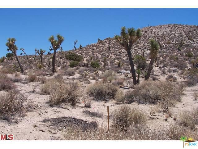 0 Hilton Lane, Yucca Valley, CA 92284 (MLS #18350610PS) :: Hacienda Group Inc