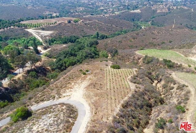 0 Via Ranchitos, Fallbrook, CA 92028 (MLS #18352404) :: The John Jay Group - Bennion Deville Homes