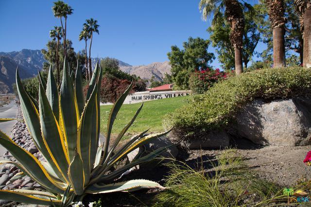 2860 N Los Felices Road #104, Palm Springs, CA 92262 (MLS #18353122PS) :: Hacienda Group Inc