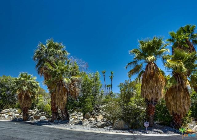 0 Ladera Circle, Palm Springs, CA 92262 (MLS #18354950PS) :: Team Wasserman
