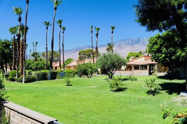 2695 N Whitewater Club Drive, Palm Springs, CA 92262 (MLS #18360604PS) :: The John Jay Group - Bennion Deville Homes