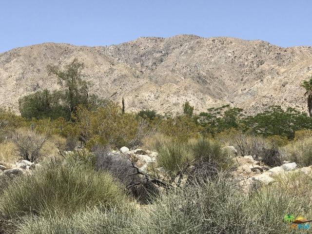62772 Quail Springs Road, Joshua Tree, CA 92252 (MLS #18360826PS) :: Brad Schmett Real Estate Group