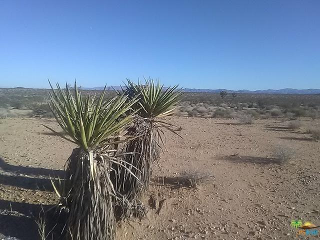 0 Bowman Trail/Winters Apn 0631, Joshua Tree, CA 92252 (MLS #18401230PS) :: The Jelmberg Team