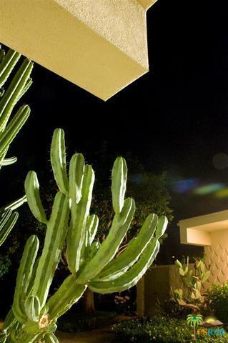 108 Desert Lakes Drive, Palm Springs, CA 92264 (MLS #18412614PS) :: Brad Schmett Real Estate Group