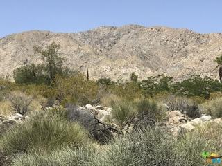 62772 Quail Springs Road, Joshua Tree, CA 92252 (MLS #18418052PS) :: Brad Schmett Real Estate Group