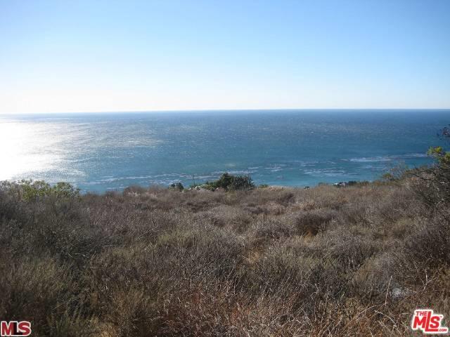 32838 Camino De Buena Ventura, Malibu, CA 90265 (MLS #19423818) :: The John Jay Group - Bennion Deville Homes