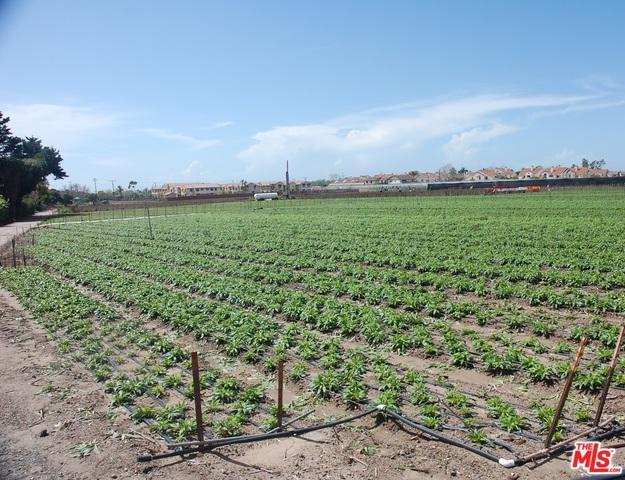 4098 Via Real, Carpinteria, CA 93013 (MLS #19427934) :: Hacienda Group Inc