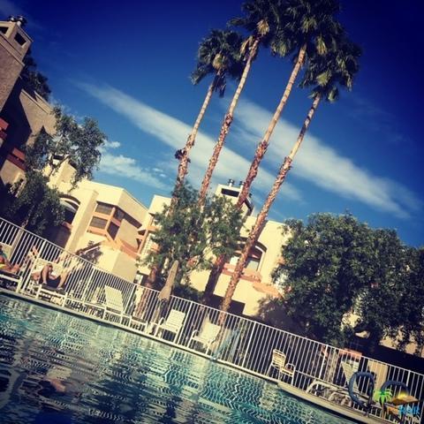 2601 S Broadmoor Drive #74, Palm Springs, CA 92264 (MLS #19441906PS) :: Brad Schmett Real Estate Group