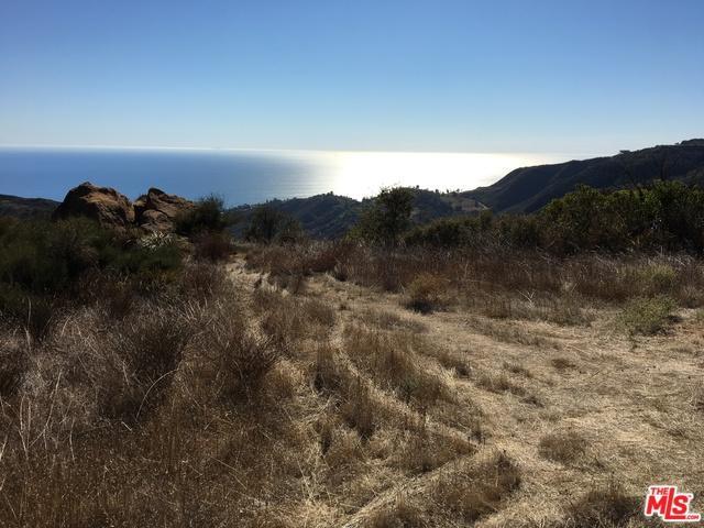 0 Las Flores Heights Rd, Malibu, CA 90265 (MLS #19444114) :: Deirdre Coit and Associates