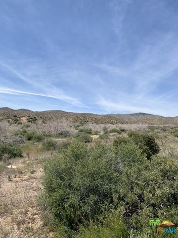 3144 Ox Yoke Pass, Pioneertown, CA 92268 (MLS #19450776PS) :: The John Jay Group - Bennion Deville Homes