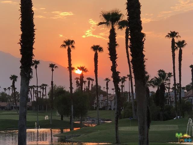 38275 Crocus Lane, Palm Desert, CA 92211 (MLS #19456170PS) :: Brad Schmett Real Estate Group