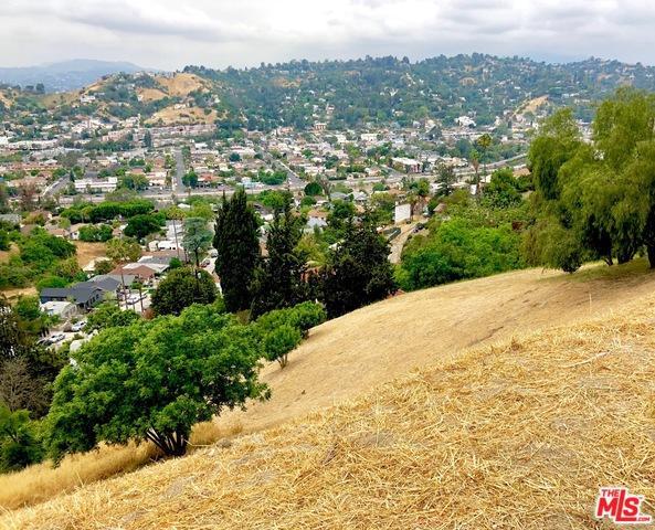0 Montecito Drive, Los Angeles (City), CA 90031 (MLS #19467940) :: Deirdre Coit and Associates