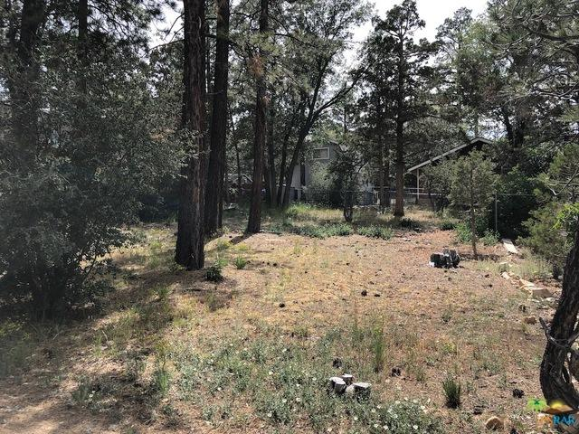 668 Victoria Lane, Sugarloaf, CA 92386 (MLS #19483722PS) :: Deirdre Coit and Associates