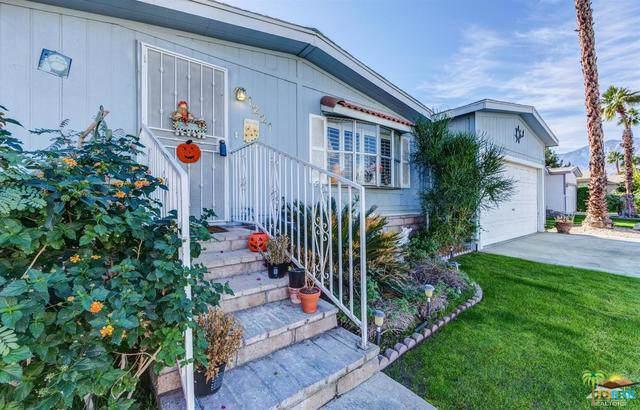 1221 Via Yolo, Cathedral City, CA 92234 (MLS #19486742PS) :: Brad Schmett Real Estate Group