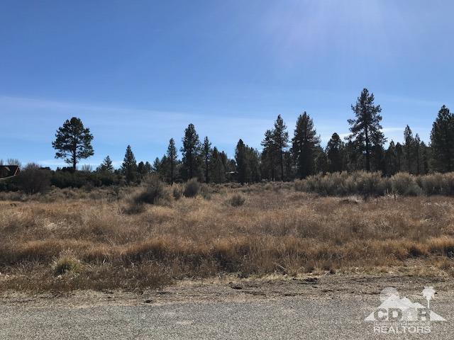 45 Devils Ladder Road, Mountain Center, CA 92561 (MLS #218003992) :: The John Jay Group - Bennion Deville Homes